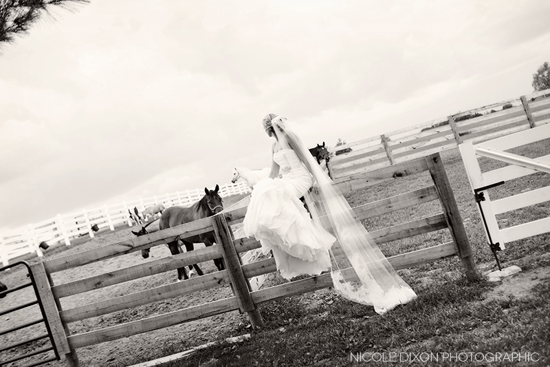 nicole-dixon-photographic-ohio-outdoor-farm-irongate-wedding-20